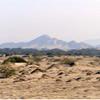 пустыня Сечура