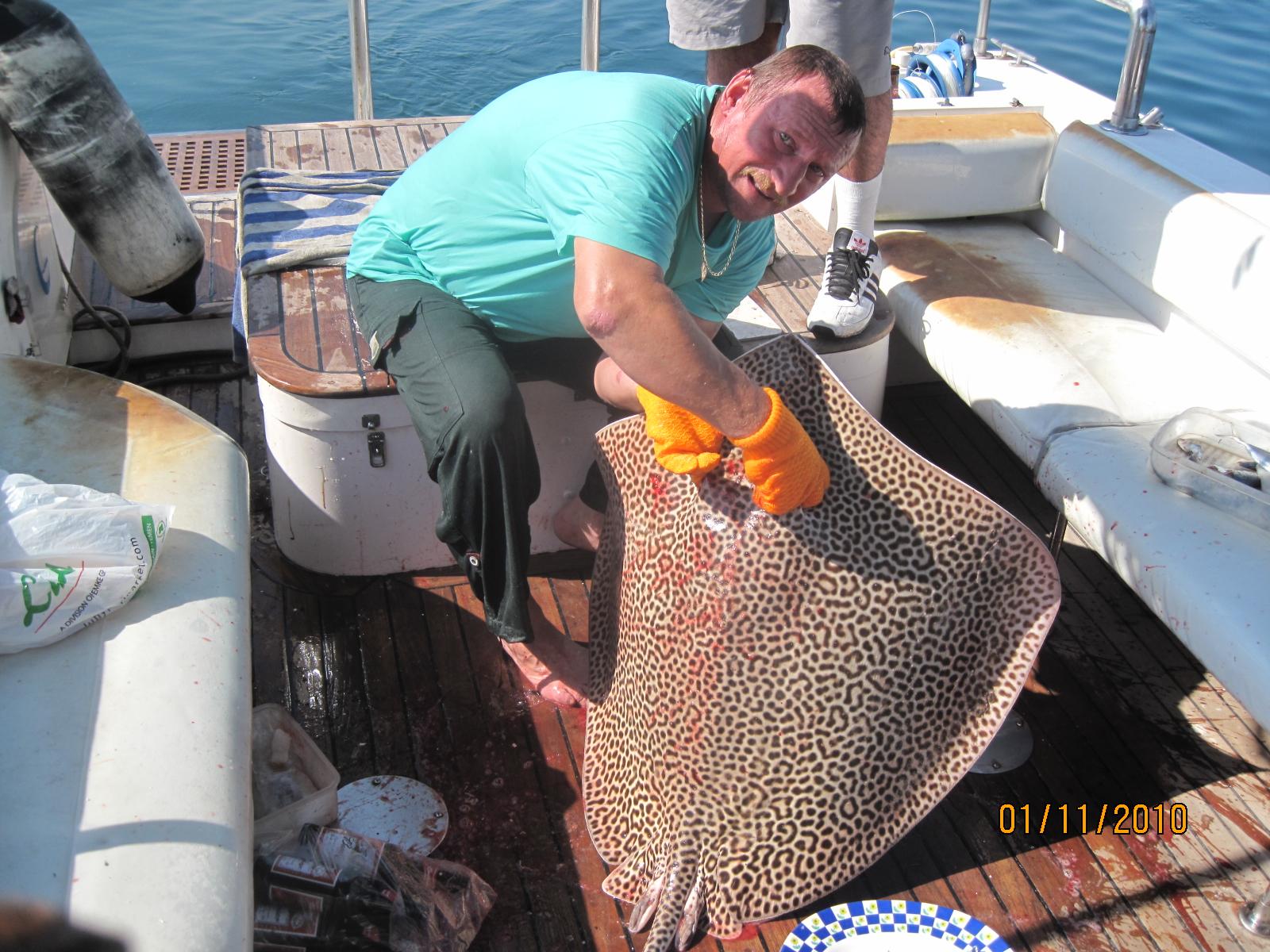 Рыбалка симуляторы подводная охота